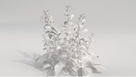 Weeds 3D Model 2