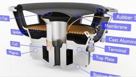 Speaker Subwoofer Inside Diagram 3D Model 9