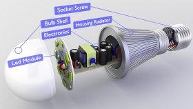 Bulb Inside 3d (3)