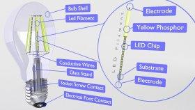 Bulb Classic Inside 3d (4)