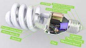Bulb Filament Inside 3d (5)